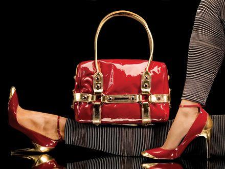 6d81a822c5e6e Czy luksus może być tani marka Wittchen dostępna w Lidlu